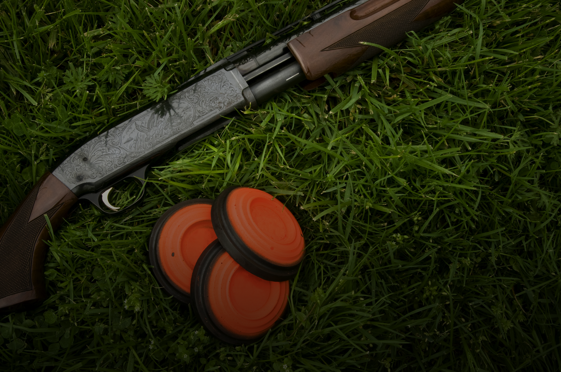 a shotgun and clay pidgeons, covered under our sport insurance
